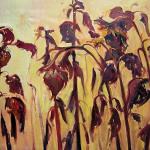 Słoneczniki  80 x 120 cm  olej, płótno